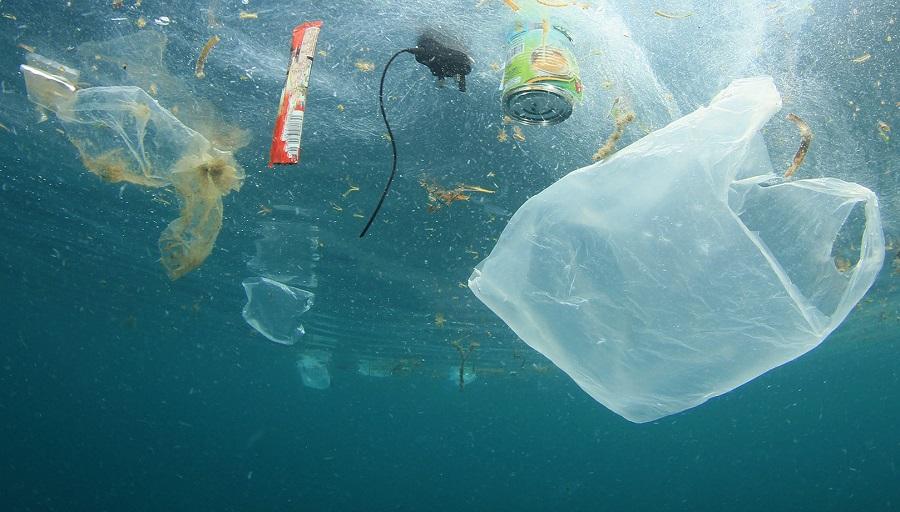 Prohibir plásticos de un solo uso en México | Página 66